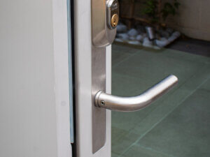 Lacuna Stainless Steel Main Handle